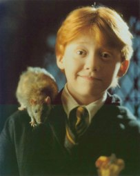 Ron when he was nicer.
