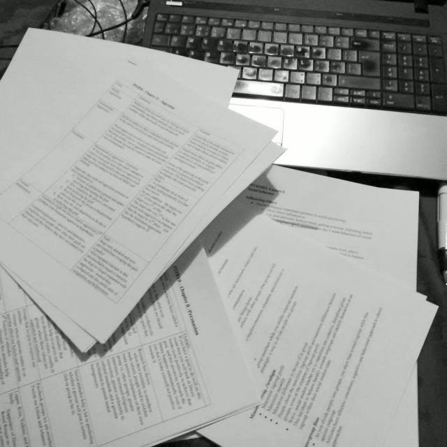 2 School Papers