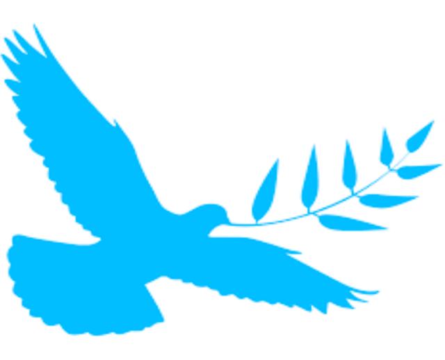 peace-dove
